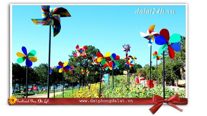 Thành phố hoa Đà Lạt trong mùa Festival